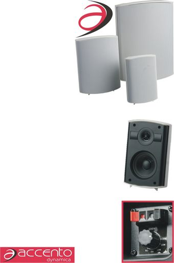 100V-LINE BOX SPEAKERS
