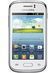 Galaxy Young (S6310T)